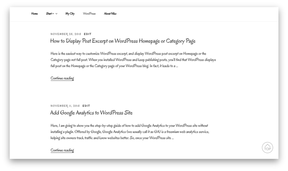 post excerpt on wordpress category page